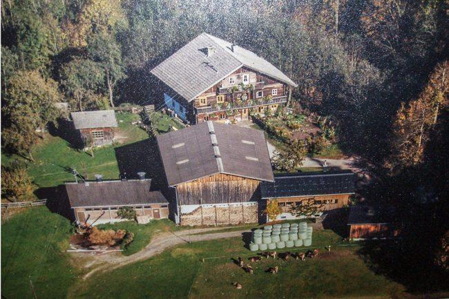 Geschichte des Erbhofes – Landwirtschaft am Hacklbauer in Altenmarkt, Salzburger Land