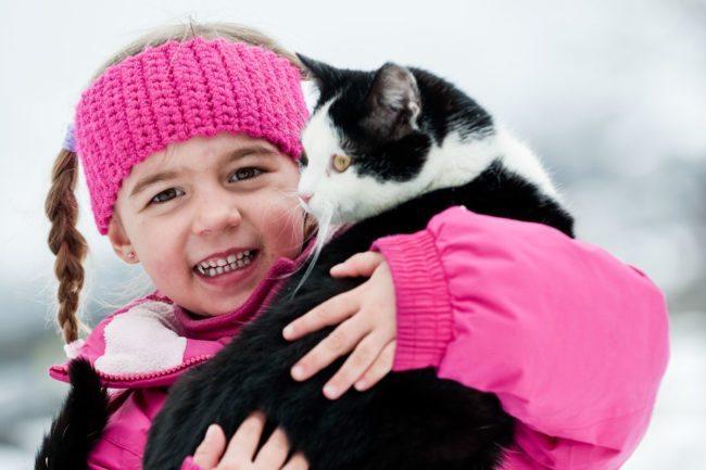 Katze –Spiel & Spaß beim Hacklbauer –Kinderparadies im Bauernhofurlaub in Altenmarkt, Salzburger Land
