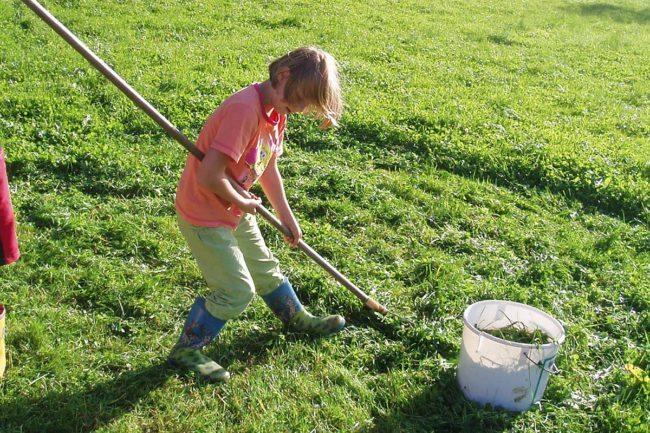 Mithelfen in der Landwirtschaft –Spiel & Spaß beim Hacklbauer –Kinderparadies im Bauernhofurlaub in Altenmarkt, Salzburger Land